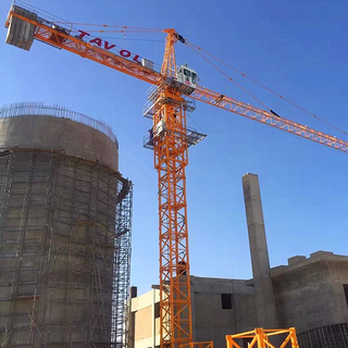 Hammerhead Topkit Tower Crane Service in Cement Factory